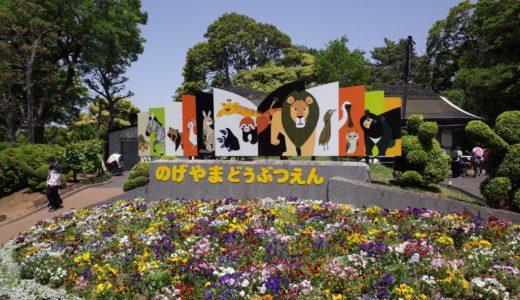 【GW】入場無料の野毛山動物園!アクセスや混雑状況は? 子連れのお出かけにおすすめです!